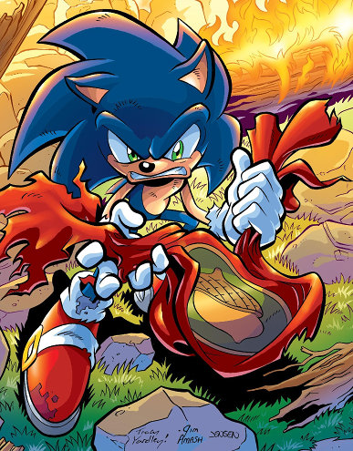Sonic the Hedgehog #176 cover showing Sonic holding the torn flag of the Kingdom of Acorn