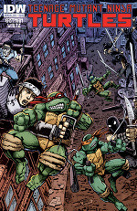 'Teenage Mutant Ninja Turtles' Annual 2012