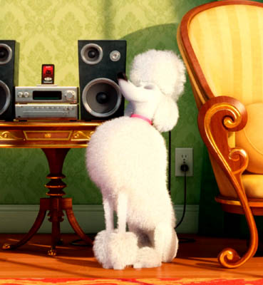 A white poodle sits in front of a living room stereo.