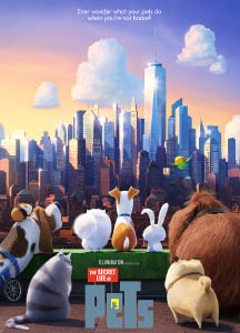 A group of pets stare at a cityscape.