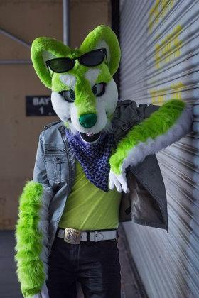 Hugs Interviews Furry Musician Niic The Singing Dog